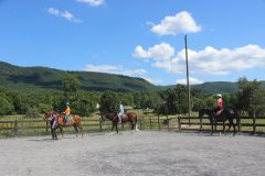 Group Horseback Riding Lesson